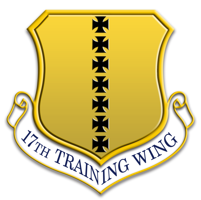17th Training Win insignia