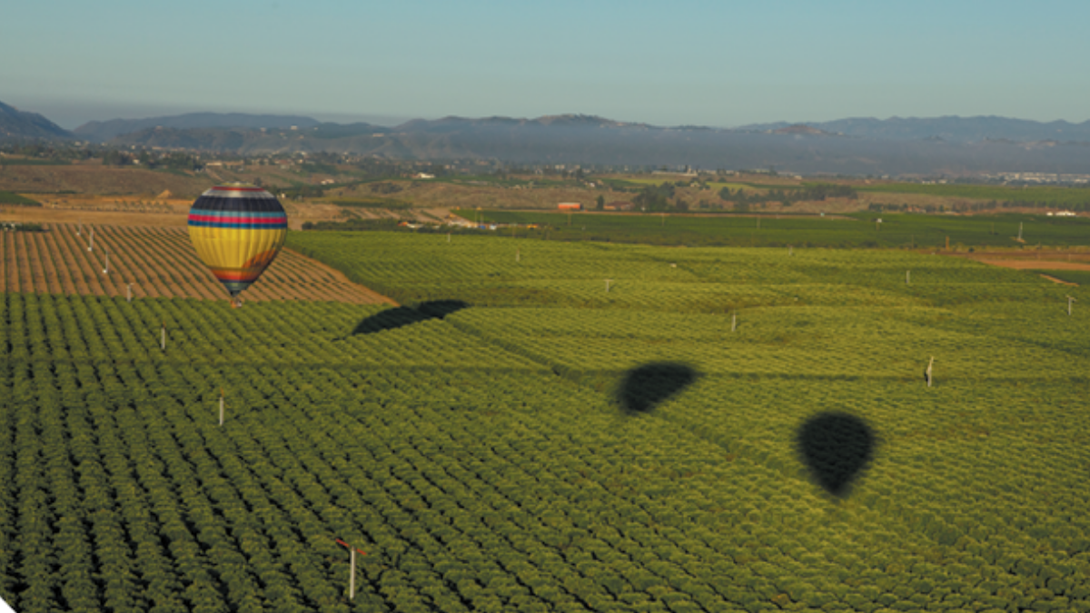 Hot Air Balloon over Temecula Vineyards; Edwards Air Force Base Southern California and Beyond
