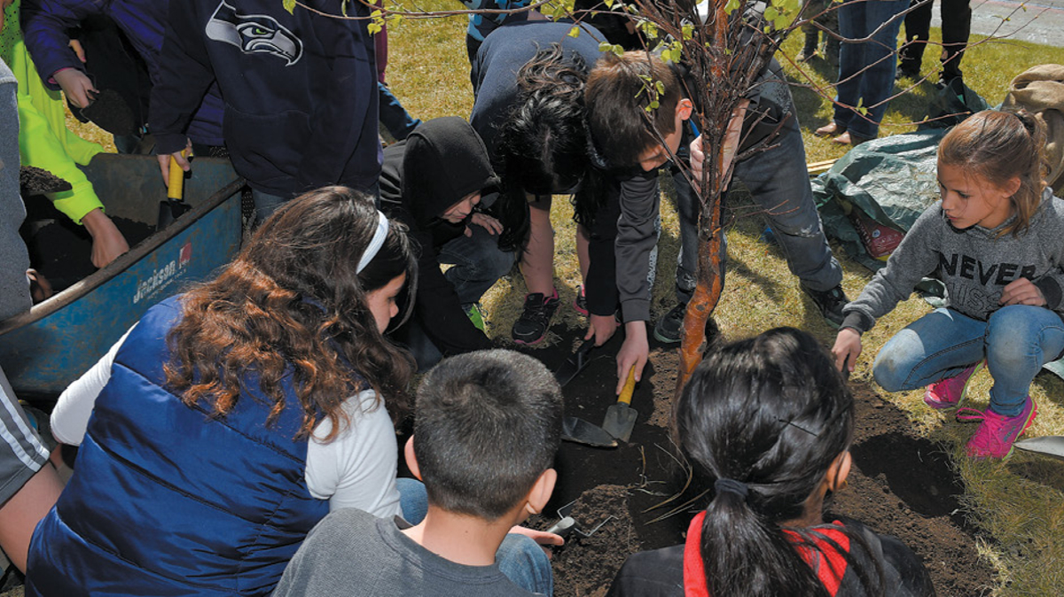 Children planting tree, Joint Base Elmendorf-Richardson